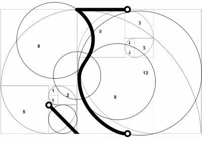 Formato da cuia ajustado a fibonacci.